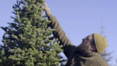 Man Tries To Touch The Top Of Christmas Tree, To Show His Son How Tall It Is Stock Footage
