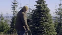 Man Inspects Christmas Tree, Prepares To Cut It Down, His Little Boy Watches Stock Footage