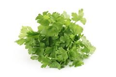 Bunch of fresh parsley isolated Stock Photos