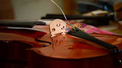 Luthier placing the strings to a violin or viola in the workplace - stock footage