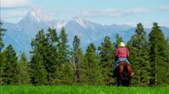 Male horse rider Kootenay National Park Mountain Range and trail Stock Footage