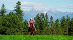 Male rider and horse Kootenay National Park Mountain Range and trail - stock footage