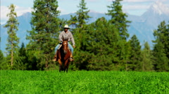 Cowboy galloping across Kootenay Mountain Range - stock footage