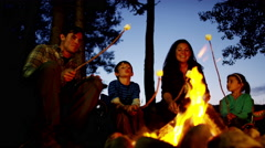 American Caucasian family camping and toasting smores in forest on holiday - stock footage