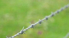 Barbed wire with green grass on background Stock Footage