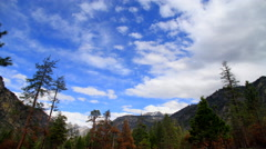 Sequoia National Park 4k 005 Stock Footage