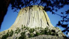View of green foliage near Devils Tower Wyoming USA Stock Footage