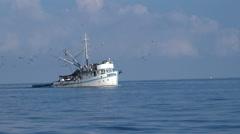 fishing boat in open sea, followed by seagull birds - Croatia, Adriatic sea - stock footage