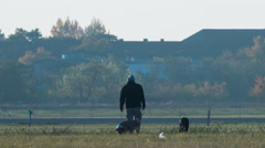 Berlin-Tempelhof man walking with dogs Stock Footage