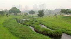 Hazy Park in Singapore - stock footage