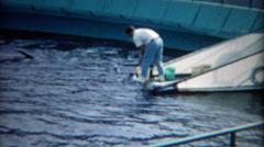 1965: Aquatic park animal trainer feeding walrus fish dolphins jump.  LOS - stock footage