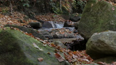 Beautiful scene in nature, mountain river flowing, big stones in water, close up Stock Footage