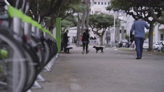 People walking in boulevard - stock footage