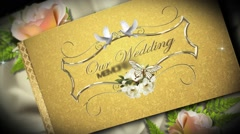 Our Precious Wedding Album Stock After Effects