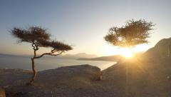 New Year Sunrise in Oman Motion Time Lapse - stock footage