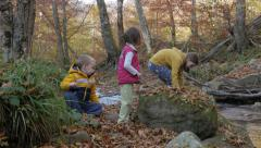 Two little children and one young girl enjoying by the creek in forest. - stock footage
