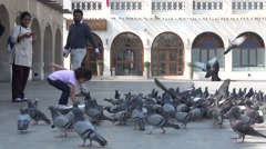 Little girl gives food to pigeons on square Stock Footage
