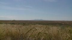 Alberta grassland landscape. Stock Footage