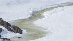 Semi-frozen stream in the Arctic tundra. - stock footage