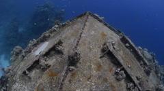 Onion dome wreck, Cousteau precontinent - Red Sea, Sudan Stock Footage