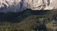 Forest laying at the foot of the Bugaboo Mountain range, British Columbia. Stock Footage
