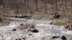 Stream flowing through Carp Ridge. Tilt Pan - stock footage