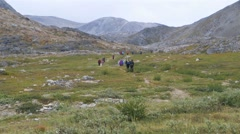 Time-lapse of expeditioners hiking in Torngat Mountains. Stock Footage