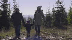 Happy Family Walk Around Christmas Tree Farm, In Search Of The Perfect Tree Stock Footage