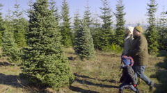 Family Picks Out The Perfect Tree At Christmas Tree Farm Stock Footage