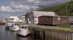Pathway leading to a Newfoundland lighthouse, St. John Harbour. Tilt - stock footage
