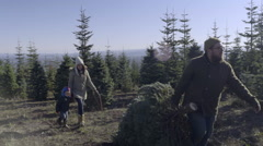 Father Carries Christmas Tree, Mother Carries Saw And Hold Her Son's Hand Stock Footage