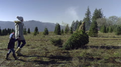 Father Carries Christmas Tree, Mother And Son Hold Hands And Follow Along Stock Footage