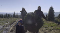 Family Carries Christmas Tree, Little Boy Runs Ahead, With Big Smile Stock Footage