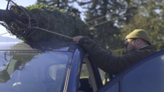 Man Tugs On Rope To Make Sure His Christmas Tree Is Secure (On Top Of Car) Stock Footage