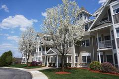 Apartment building with spring tree Stock Photos
