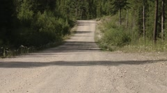 The road leading to the Bugaboo Mountains, British Columbia. Tilt Stock Footage
