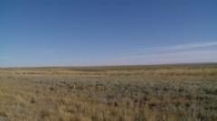 Saskatchewan, Val Marie, Prairie landscape - stock footage