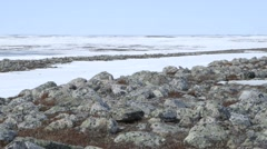 Rocky landscape of the Arctic tundra. Stock Footage