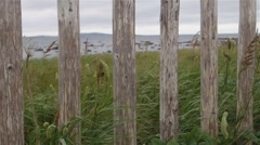 Fence posts surrounding LAnse aux Meadows. Stock Footage