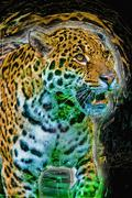 Jaguar illustration - stock illustration