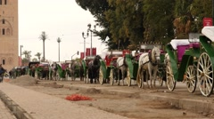 Horses taxi awaiting for clients in near Jemaa el Fnaa  Marrakesh Stock Footage