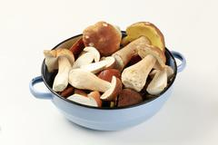 Freshly picked edible mushrooms in a pan Stock Photos