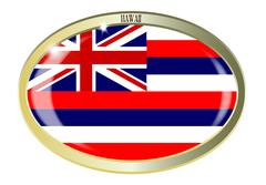 Hawaii State Flag Oval Button - stock illustration