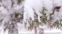 Snowy winter. Good New Year spirit. Stock Footage
