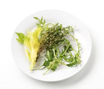 Sprigs of thyme and salad greens on a plate - stock photo
