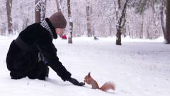 Girl feeds the squirrel nuts in the park. - stock footage