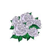 Hand Drawn Wedding Rose Bouquet Stock Illustration