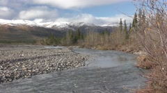 Beautiful Alaska River and Forest Scenery in Fall at Denali NP Stock Footage