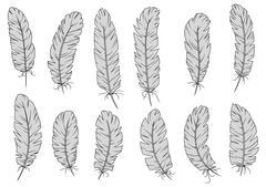 Light gray isolated fluffy bird feathers - stock illustration