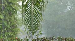 Raining in Paradise - stock footage